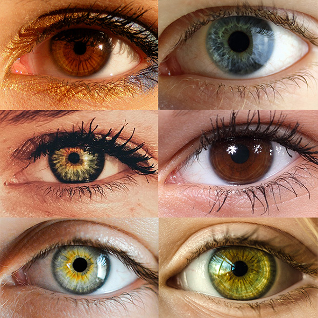 Eye Color Trivia – Pratt KS | Maydew Thibault Optometry